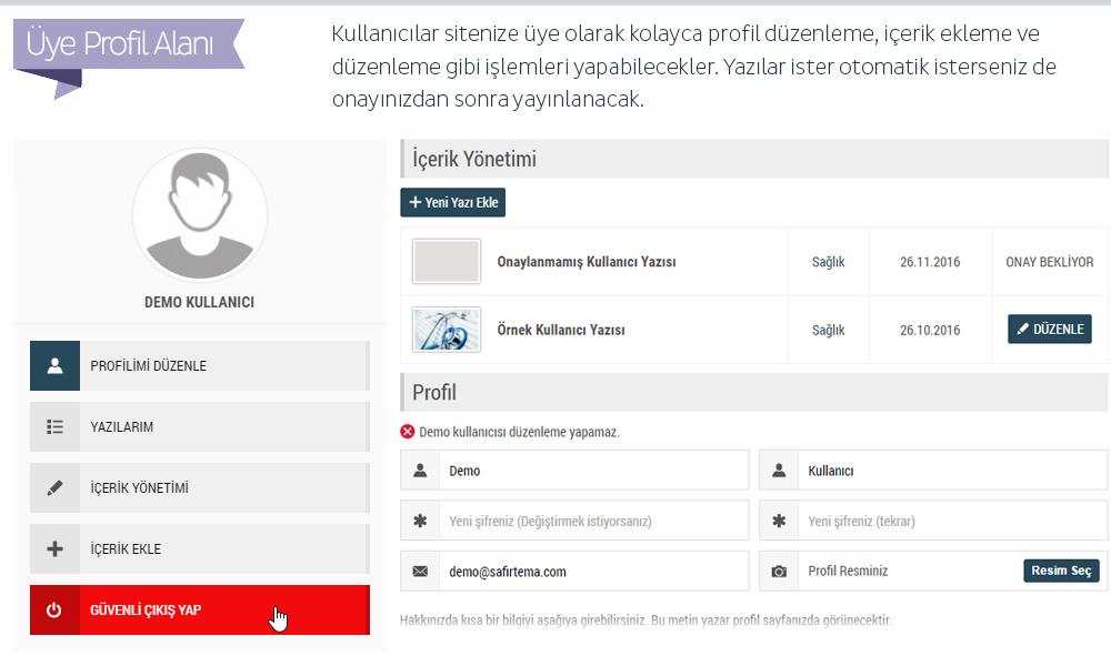 Safir Poyraz WordPress Teması