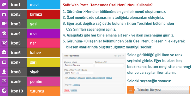 safirwebportal-icon-color